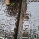 排水溝清掃完了